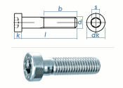 M5 x 8mm Zylinderschraube DIN7984 Stahl verzinkt FKL 8.8...