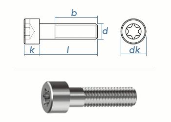 M2,5 x 4mm Zylinderschrauben TX ISO14579 Edelstahl A2 (10 Stk.)