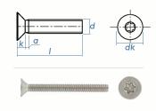 M1,6 x 20mm Senkschrauben TX ISO14581 Edelstahl A2 (10 Stk.)