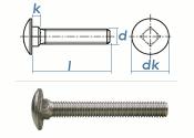 M5 x 20mm Torbandschrauben DIN603 Edelstahl A2 (10 Stk.)