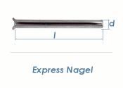 6 x 80mm Express Nägel verzinkt (10 Stk.)